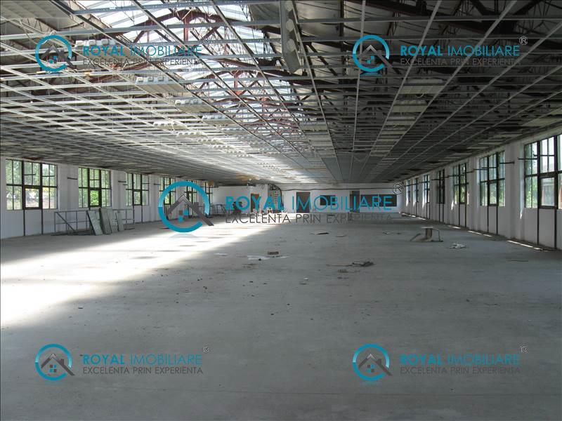 Royal Imobiliare   Inchirieri spatii industriale   Zona Vest