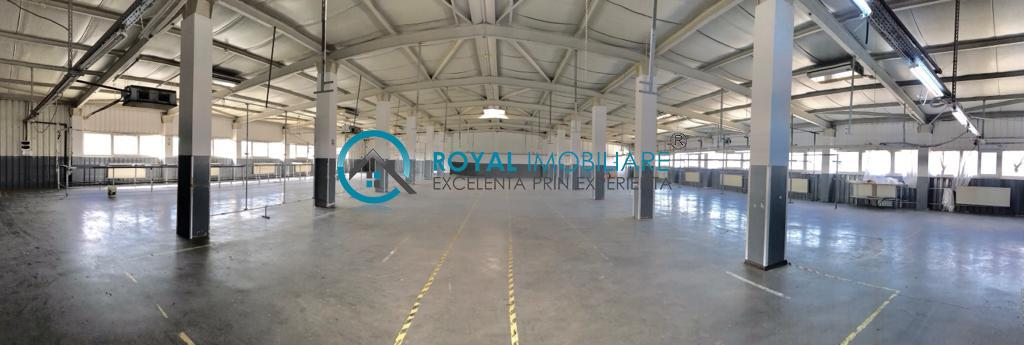 Royal Imobiliare   spatii industriale