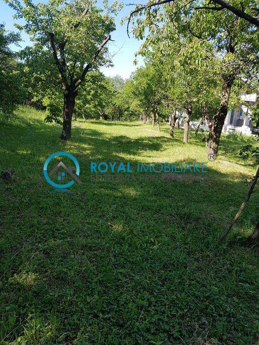 Royal Imobiliare   Vanzare Teren zona Paulesti