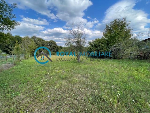 Royal Imobiliare   Vanzare Teren comuna Plopu sat Harsa