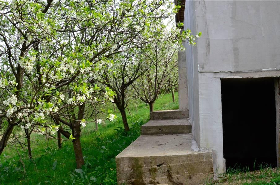 Royal Imobiliare   casa de vanzare in Valea Calugareasca