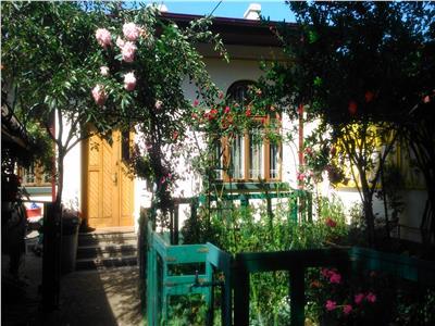 Royal Imobiliare- Vanzari case zona Tudor Vladimirescu