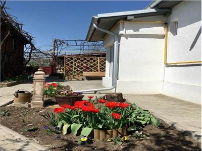Royal Imobiliare- Inchirieri case zona Marasesti